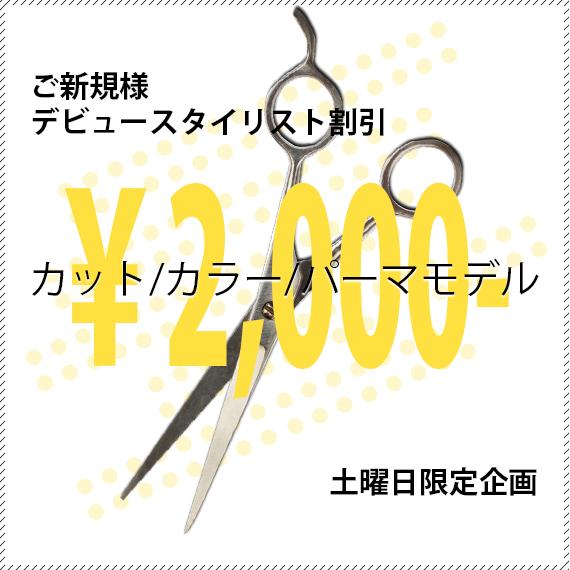 ご新規様限定デビュースタイリスト割引、カット・カラー・パーマ、2000円。土曜日限定企画