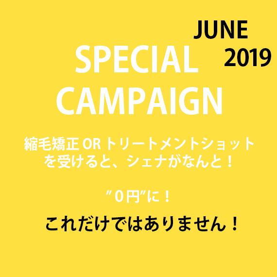6月スペシャルキャンペーン